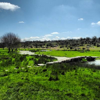 Sendero GR 14 en Zamora: Arroyo de la Palla