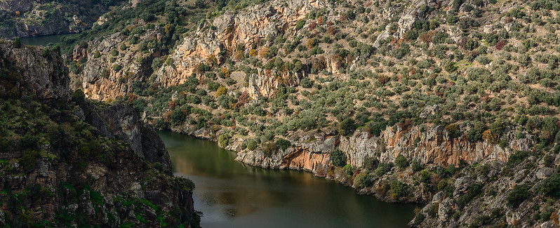 Sendero GR 14 en Zamora. Arribanzos