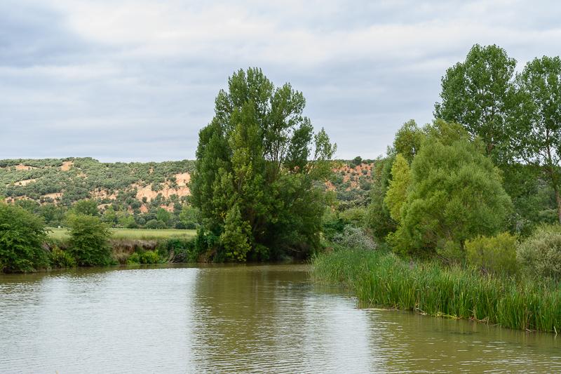 Meandro del Río Duero en Valdespina