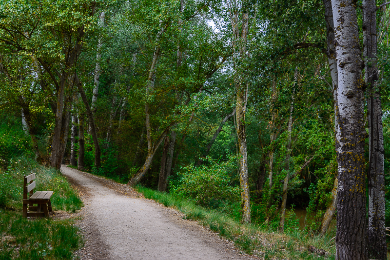 Aranda de Duero: Sendero de ribera