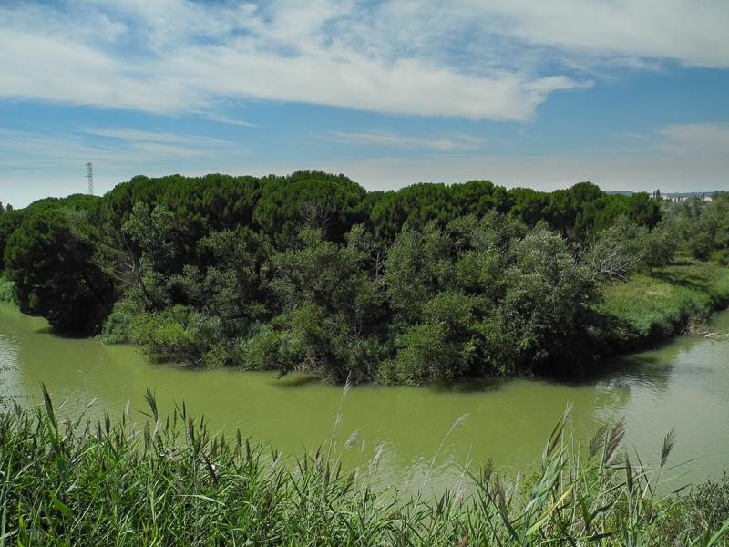 Tudela de Duero: Meandro del Duero