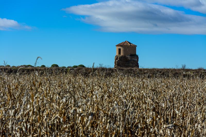 Villafranca de Duero: Palomar