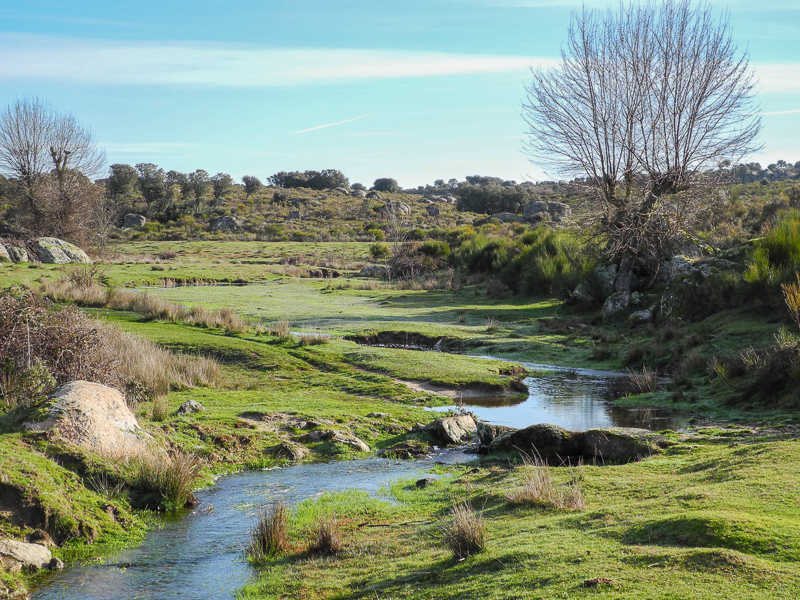 Villardiegua de la Ribera: Sendero GR 14