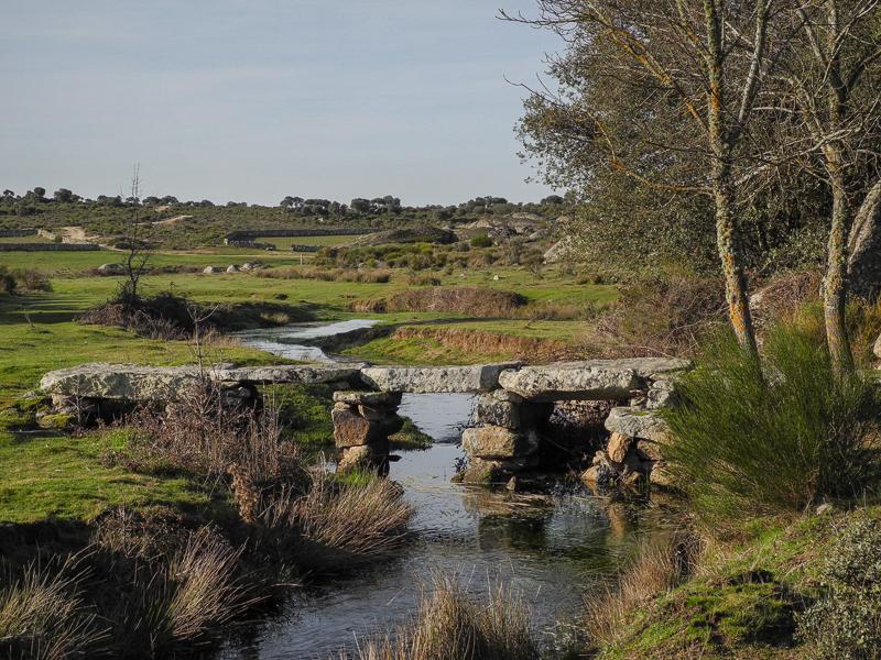 Villardiegua de la Ribera: La Puente del Caozo LLongo