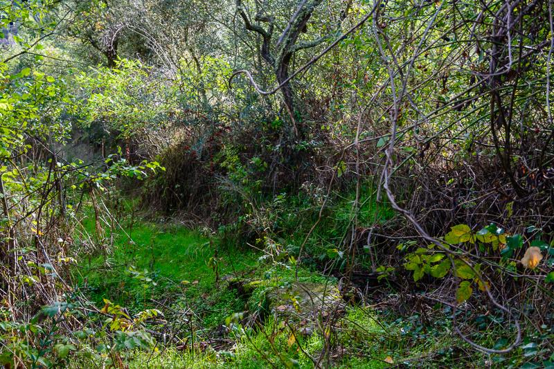 Arroyo de los Cabrones